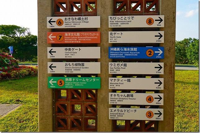 海洋博公園(沖縄県 本部町(もとぶちょう))