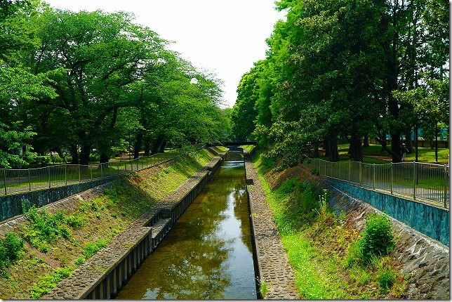 善福寺川緑地 東京都 杉並区