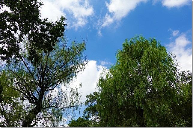 石神井(しゃくじい)公園(東京都 練馬区)
