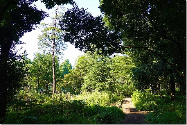 井の頭公園(東京都 武蔵野市・三鷹市)